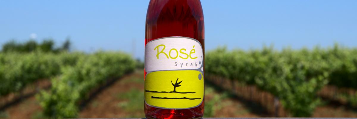 rosé syrah bodega almendralejo